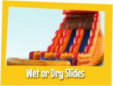 Wet or Dry Slides